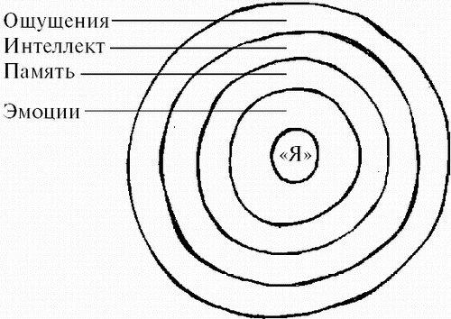 «ЧЕЛОВЕК: инструкция по применению.» X_566710