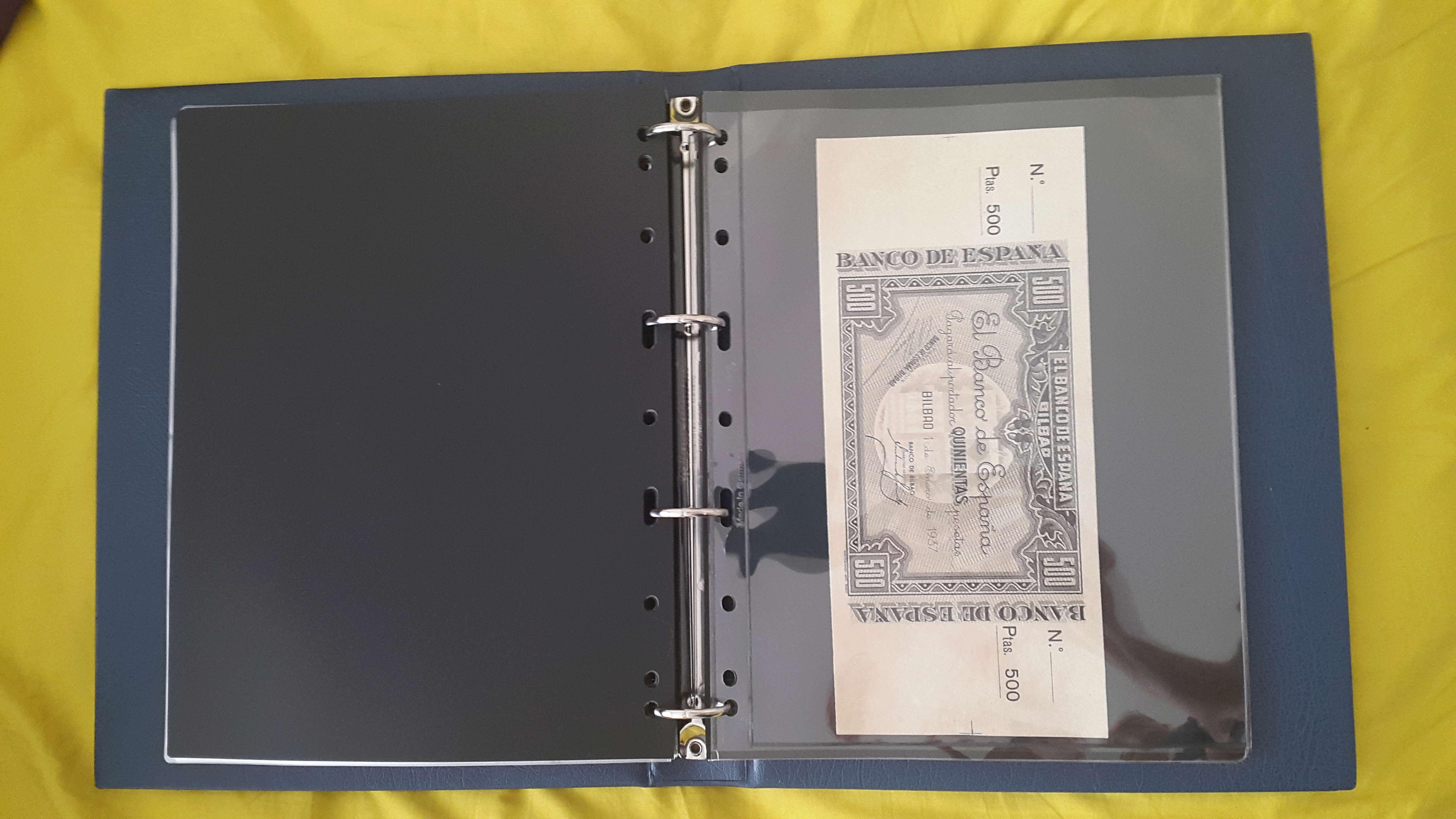 Hojas - ¿Grasilla? en hojas billetes Vario Leuchtturm 20180610