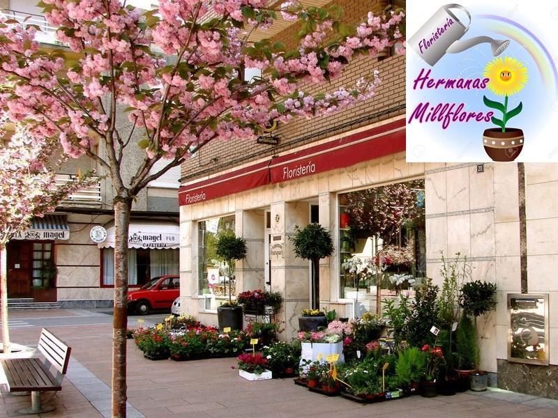 """Descripción de la floristería """"Hnas. Millflores"""" Floris10"""