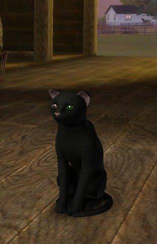 Sims 3 - Galerie & blabla de Junkemia 4_sac_10