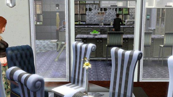 Sims 3 - Galerie & blabla de Junkemia Maison15