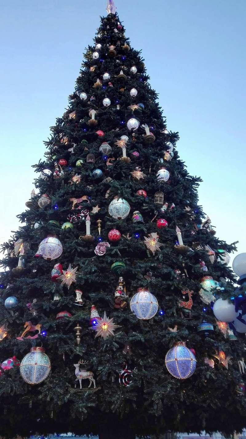 Petit séjour de Noël improvisé + Séjour janvier DLH 26178712