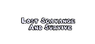 Lost Scavange And Survive