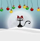 Grand concours d'avatar de Noël 2017 ! - Page 4 Chat_n10