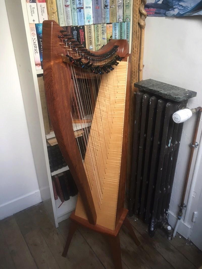 La harpe doublée ou Double-Strung Harp Img_1015