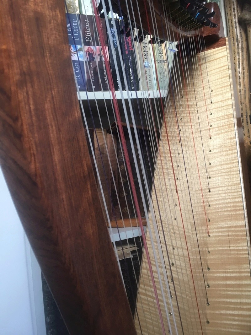 La harpe doublée ou Double-Strung Harp Img_1016