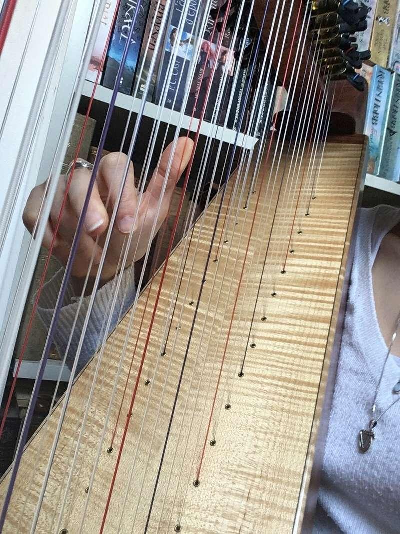 La harpe doublée ou Double-Strung Harp Img_1017