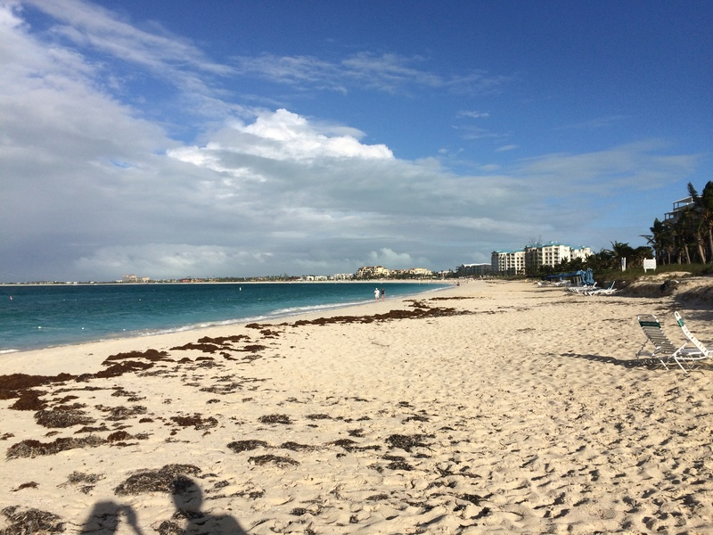 Turks And Caicos: à Providenciales en 2017 Img_2511