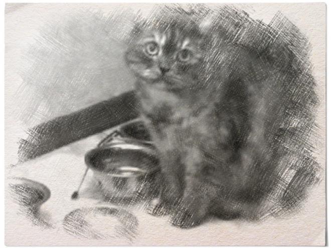 Типичный кот - Страница 3 Ai10