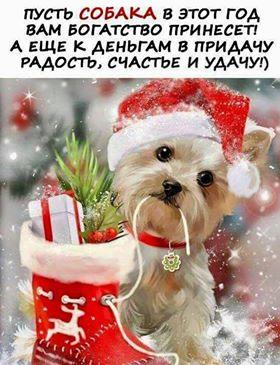 ВСЕХ, ВСЕХ, ВСЕХ!!!! С НОВЫМ 2018!!!!!!!!!!!!!!!!!!!!!!!!!!!! Eia10