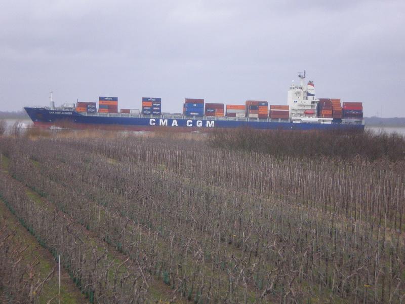 Auf der Elbe ist immer was los. Lavend10