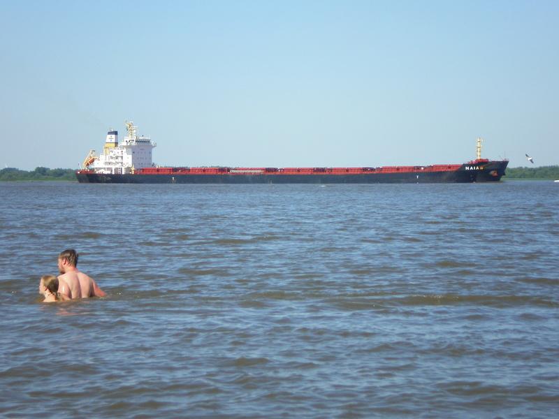 Auf der Elbe ist immer was los. Naia10