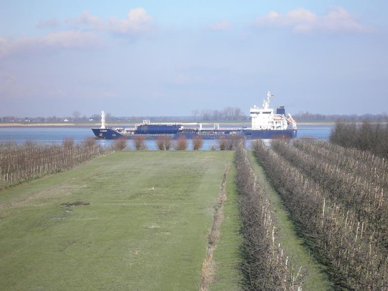 Auf der Elbe ist immer was los. P2280113