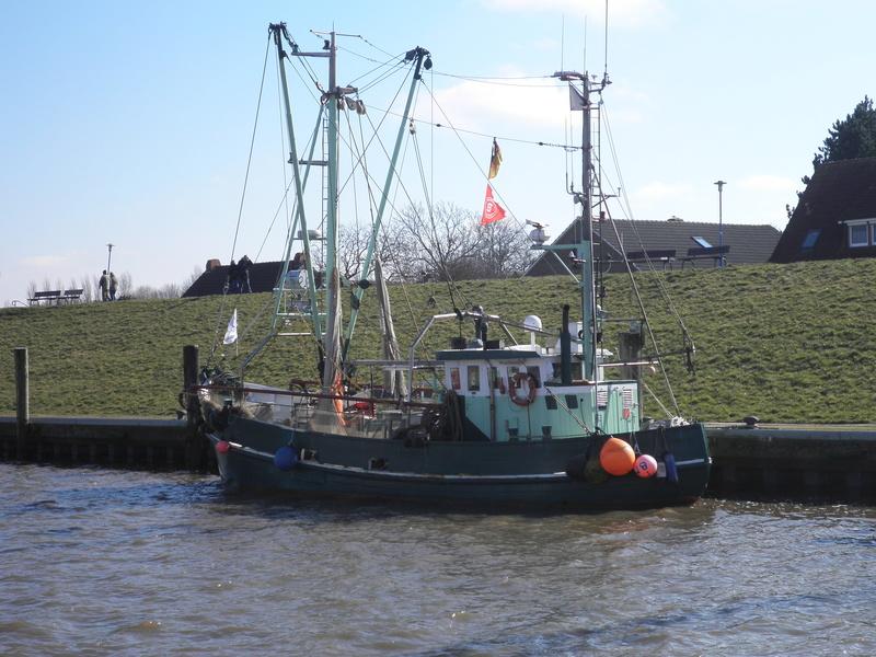 Auf der Elbe ist immer was los. P3130110