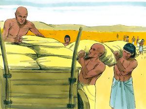 Le rêve prophétique du pharaon, Joseph intendant d'Egypte 002-jo13