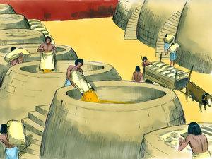 Le rêve prophétique du pharaon, Joseph intendant d'Egypte 003-jo14