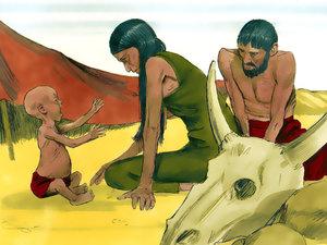 Le rêve prophétique du pharaon, Joseph intendant d'Egypte 007-jo12