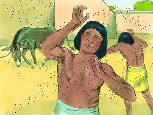 Moïse est l'envoyé de Dieu pour libérer les Israélites de l'esclavage 010-mo15