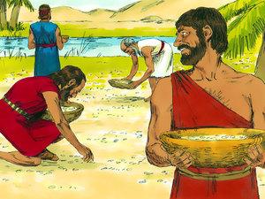 Moïse et la manne miraculeuse 020-mo21