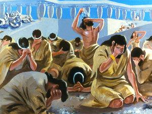 ♦ Apocalypse 11 : 3 : Deux témoins prophétisent pendant 1260 jours 034-jo11