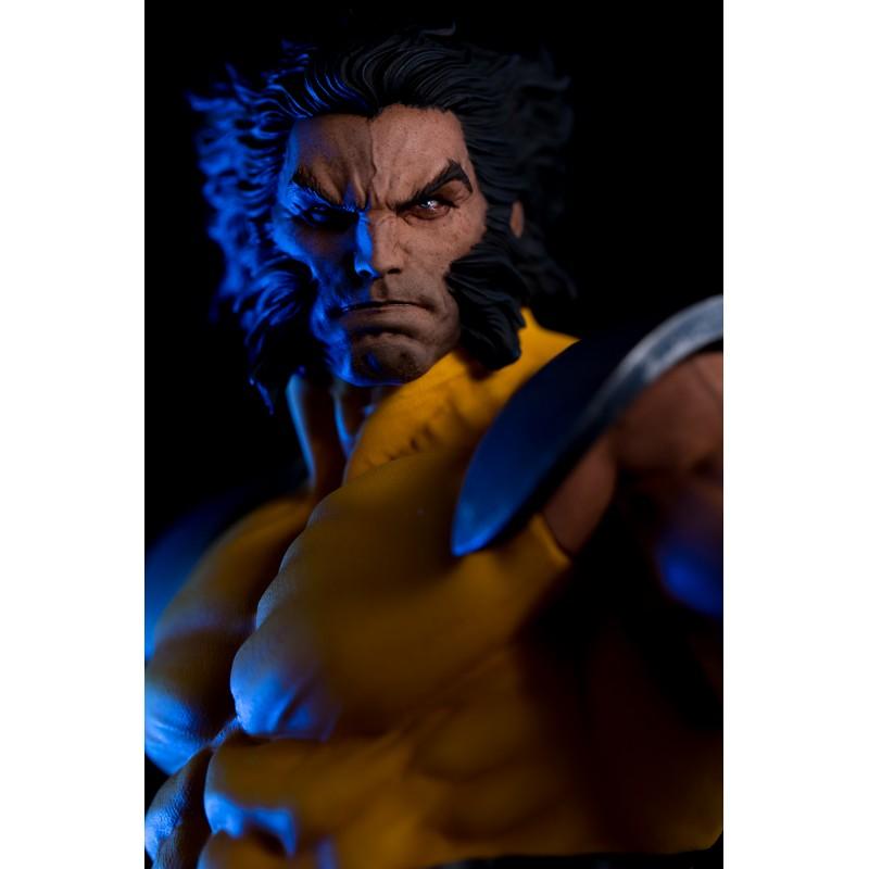 Wolverine 1/6 - Sculptée par Erick Sosa Wolver18