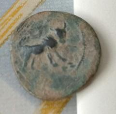 Lettre ibérique devant le visage, derrière, taureau et lune 6a65