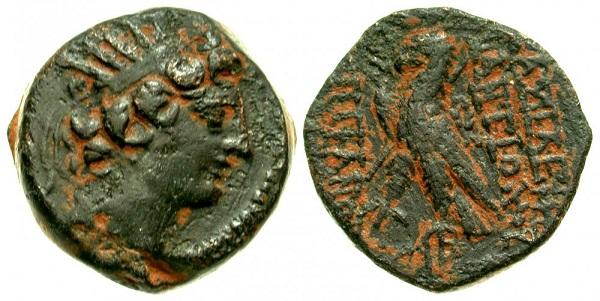 Bronze séleucide pour Antiochos IV ... ou VIII ... ? Antioc10