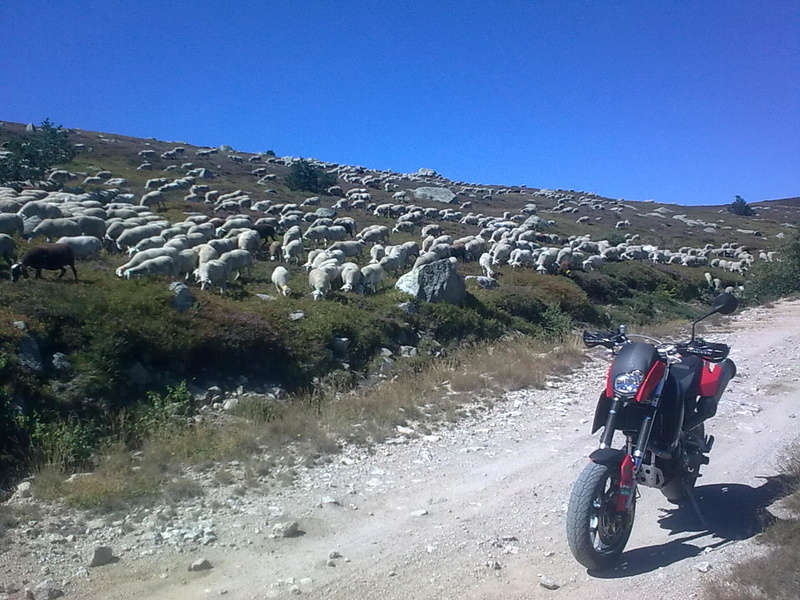 Vos plus belles photos de motos - Page 30 21082010