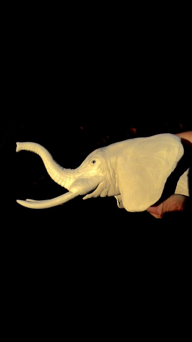 Ma tête d'éléphant  Img_1910