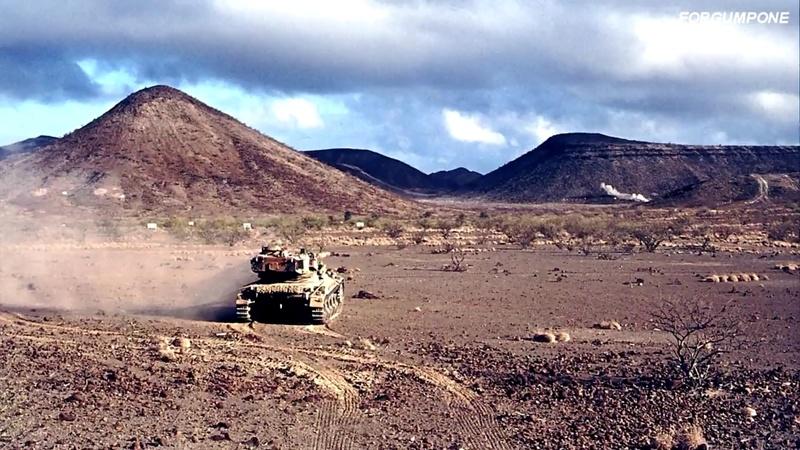 AMX-13/75 w/SS-11 ATGM (Takom 1/35) - Page 3 Amx-1312