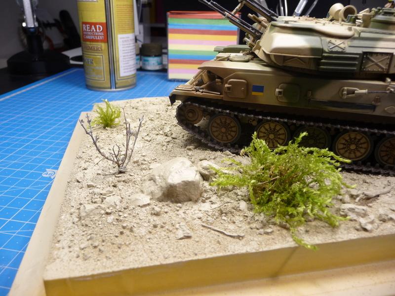 Un Diorama pour l'Amx-13/75 *** Terminé en pg 3 P1240536