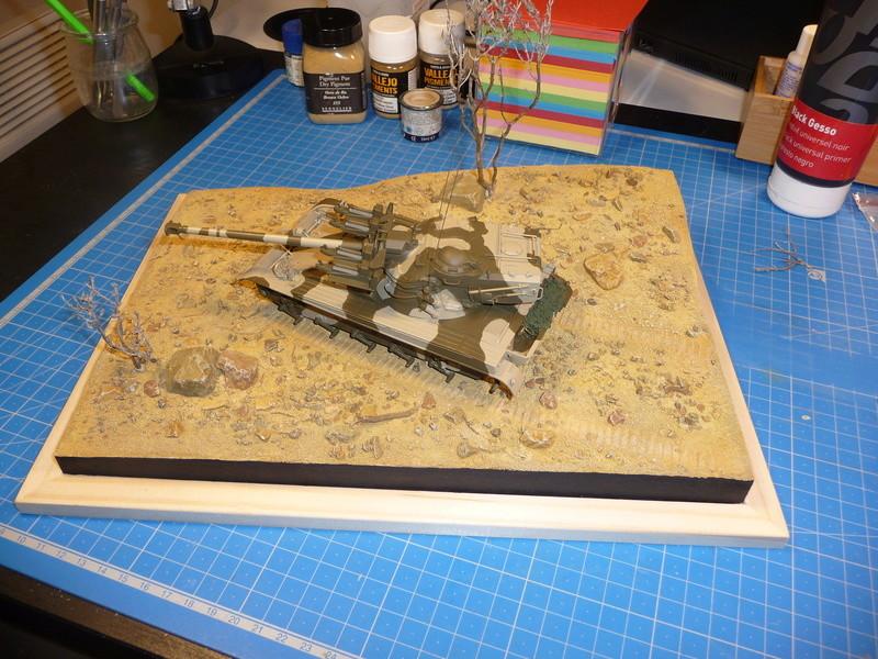 Un Diorama pour l'Amx-13/75 *** Terminé en pg 3 - Page 2 P1240813
