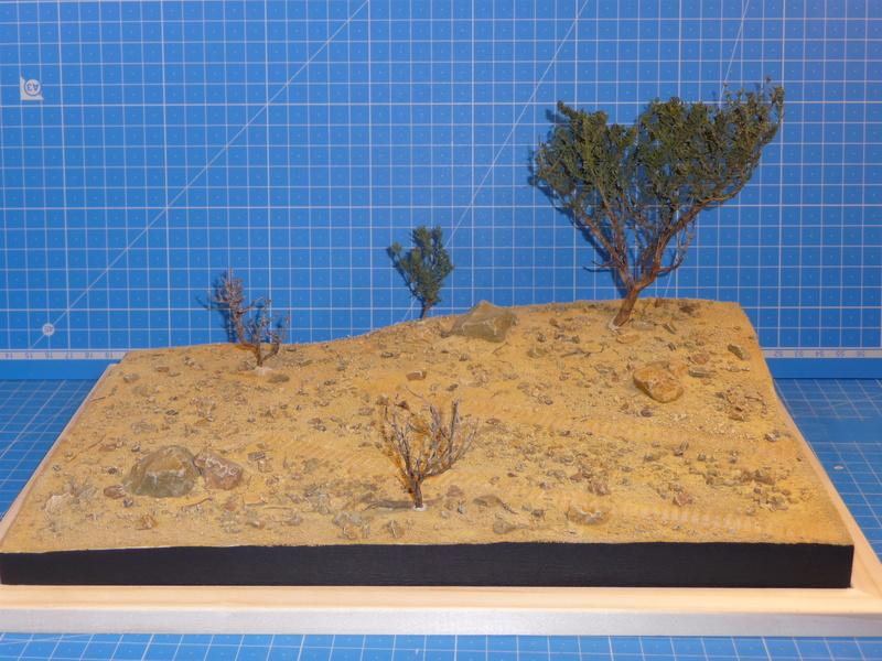 Un Diorama pour l'Amx-13/75 *** Terminé en pg 3 - Page 2 P1240827