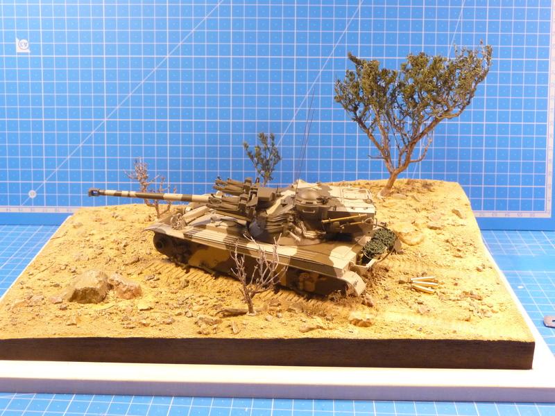 Un Diorama pour l'Amx-13/75 *** Terminé en pg 3 - Page 2 P1240828