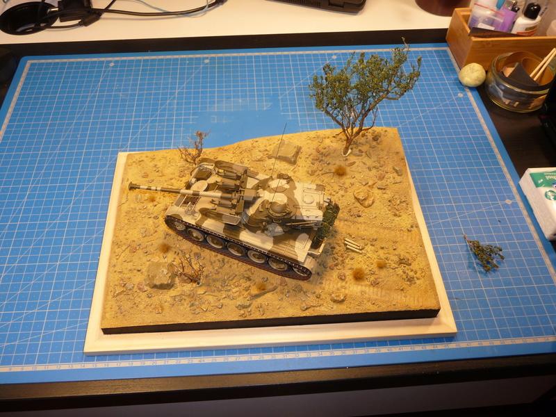 Un Diorama pour l'Amx-13/75 *** Terminé en pg 3 - Page 2 P1240830