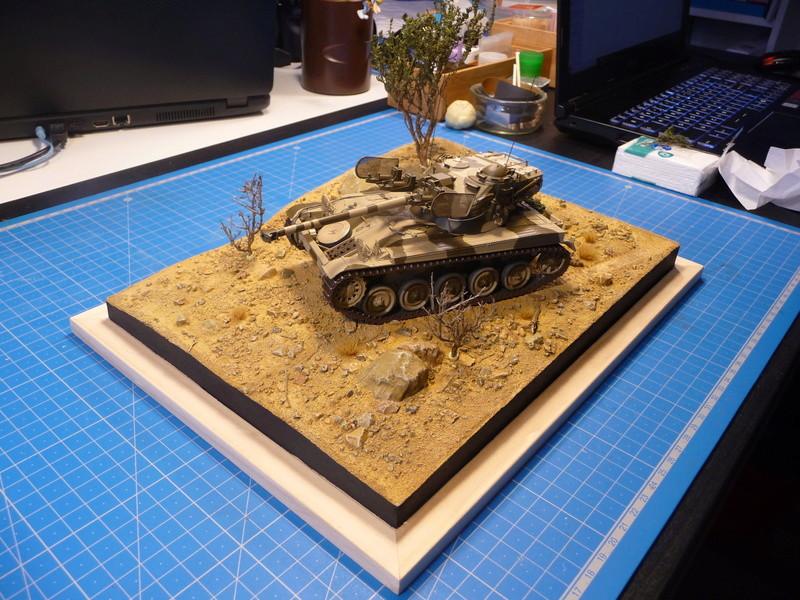Un Diorama pour l'Amx-13/75 *** Terminé en pg 3 - Page 2 P1240832