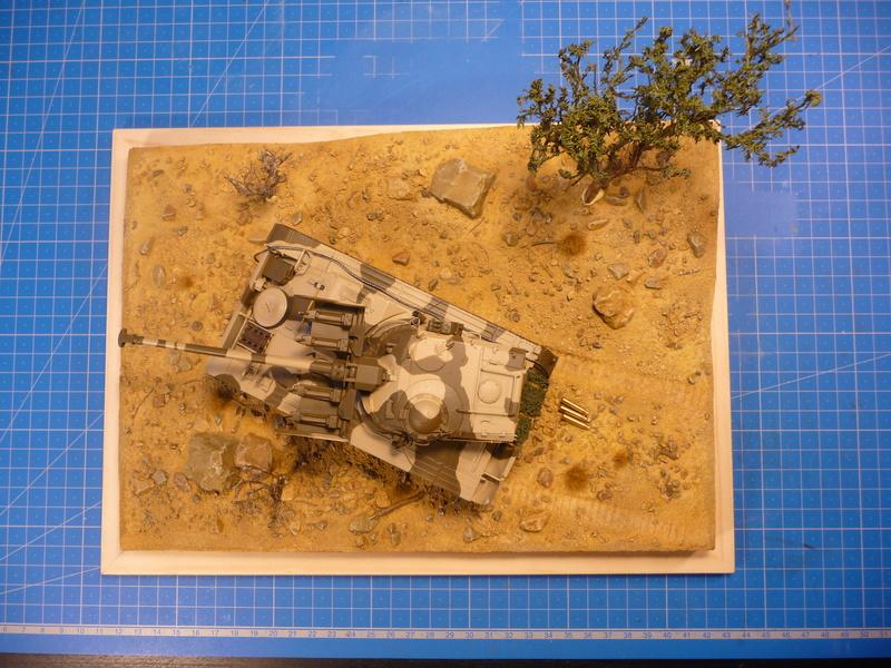 Un Diorama pour l'Amx-13/75 *** Terminé en pg 3 - Page 2 P1240912