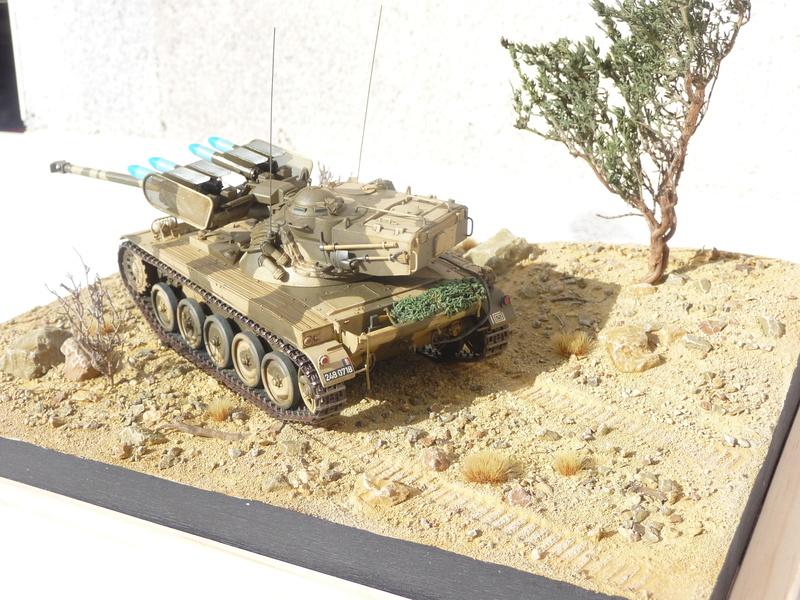 AMX-13/75 w/SS-11 ATGM 1/35 ( Takom 2038 ) *** Terminé en pg 4 - Page 4 P1250013