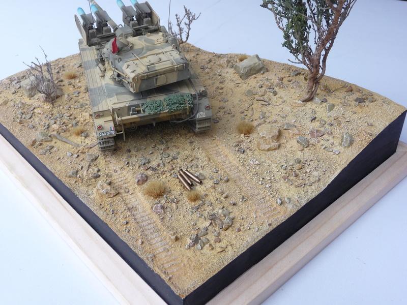 AMX-13/75 w/SS-11 ATGM 1/35 ( Takom 2038 ) *** Terminé en pg 4 - Page 4 P1250026
