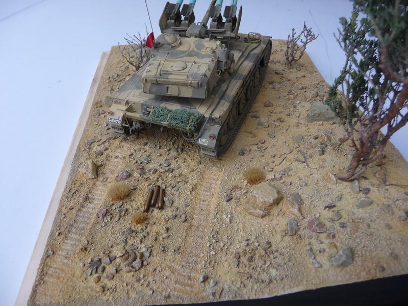 AMX-13/75 w/SS-11 ATGM 1/35 ( Takom 2038 ) *** Terminé en pg 4 - Page 4 P1250028