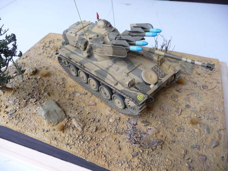 AMX-13/75 w/SS-11 ATGM 1/35 ( Takom 2038 ) *** Terminé en pg 4 - Page 4 P1250031