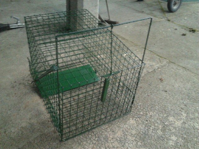 mes cages Cage_111