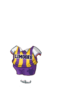 SB Limoges : le GRAND club de province Maillo10