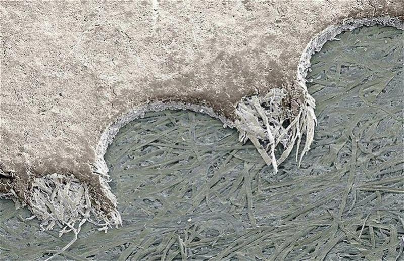 Под микроскопом (обновлено) 301210
