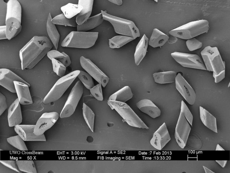 Под микроскопом (обновлено) Yieaez10