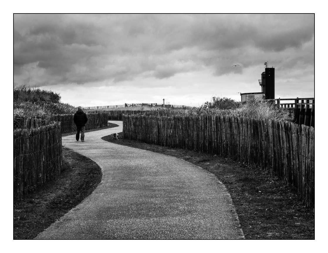 Paysage (Pierrebois) _1000212