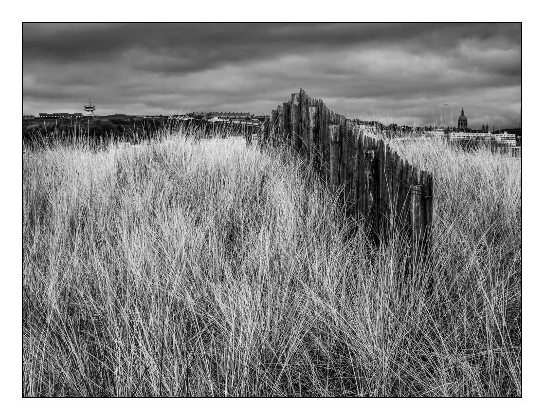 Paysage (Pierrebois) _1000218