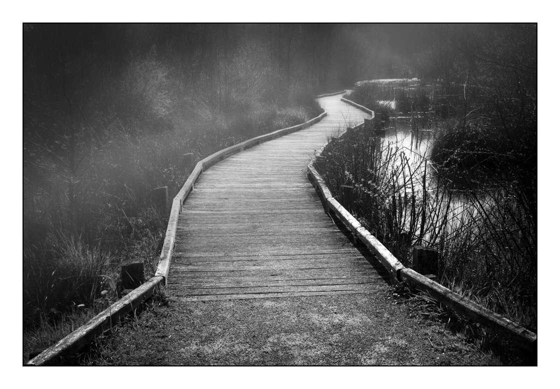 Le chemin du lac _1003814