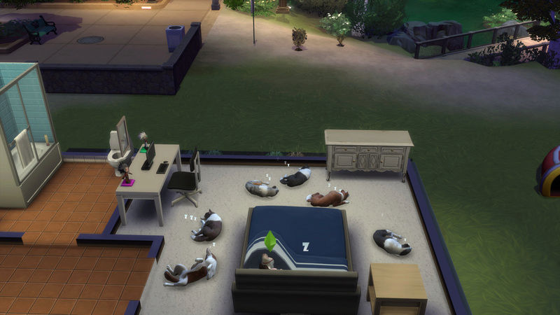 The Sims 4 Cats & Dogs (Gameversion 1.36.102.1020) OUT NOW! - Page 10 14-11-10