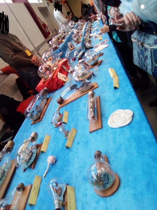 19EME FESTIVAL DE LA MINIATURE à ST RAMBERT D ALBON Img_2026